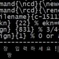 cygwin에서의 한글출력 모양.jpg